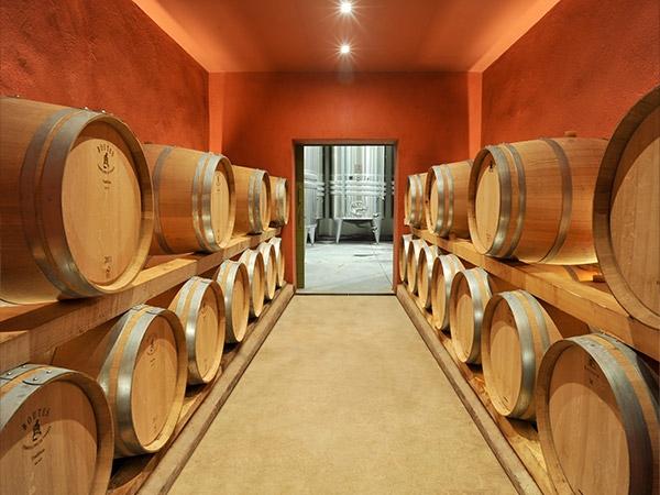 The cellar of domaine des Escaravatiers 1