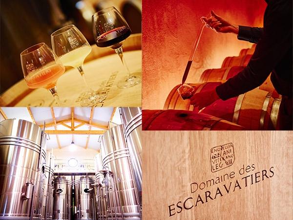 The cellar of domaine des Escaravatiers 2