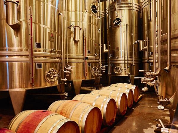 The cellar of domaine des Escaravatiers 3